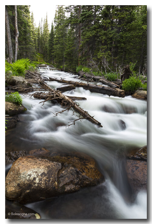 Colorado Magic Mountain Stream