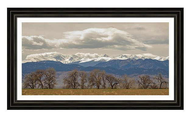 Cottonwood Trees Rocky Mountain Colorado Nature Art View Framed Print