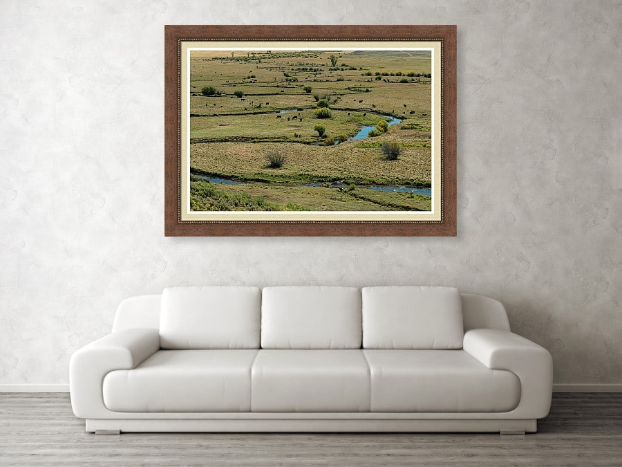 Cattle Country Landscape Framed Print
