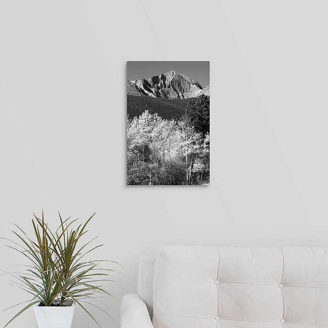 12x18 ready to hang stunning acrylic print  for $95 with free shipping