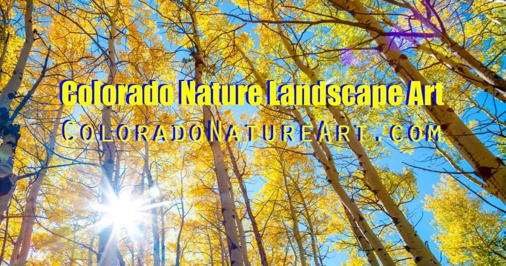 Colorado Nature Art